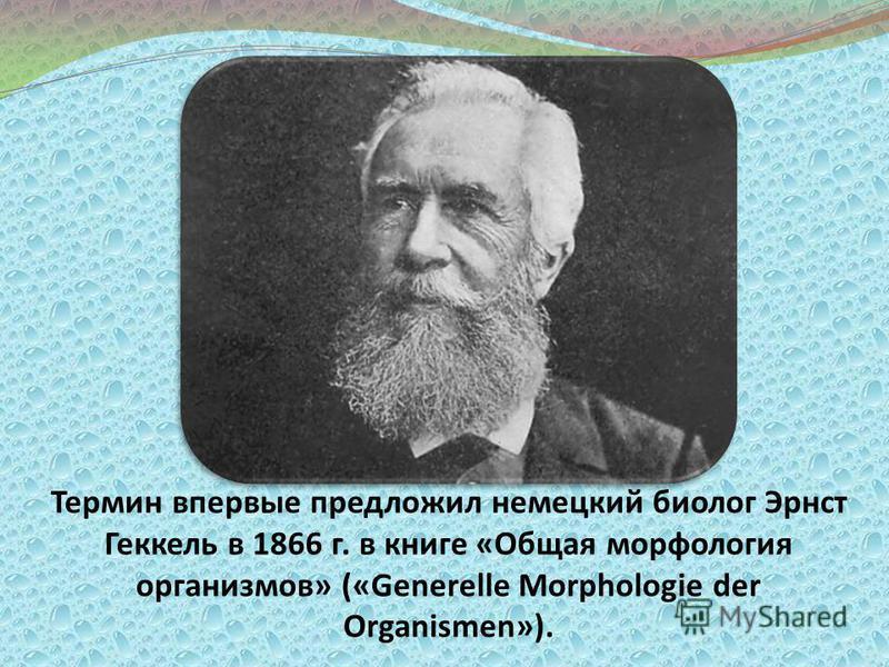 Термин впервые предложил немецкий биолог Эрнст Геккель в 1866 г. в книге «Общая морфология организмов» («Generelle Morphologie der Organismen»).