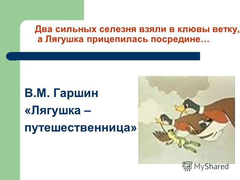 Два сильных селезня взяли в клювы ветку, а Лягушка прицепилась посредине… В.М. Гаршин «Лягушка – путешественница»