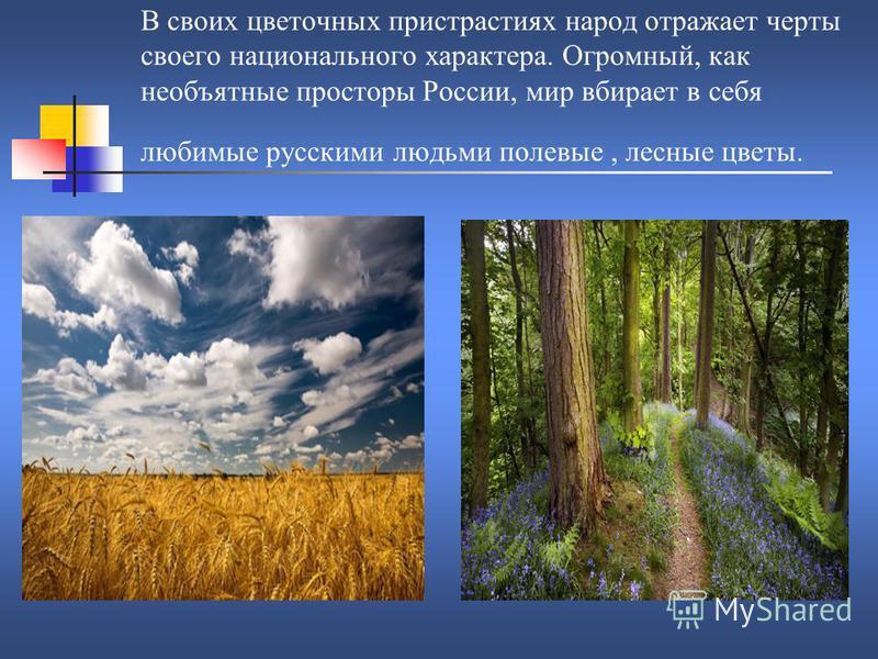 В своих цветочных пристрастиях народ отражает черты своего национального характера. Огромный, как необъятные просторы России, мир вбирает в себя любимые русскими людьми полевые, лесные цветы.