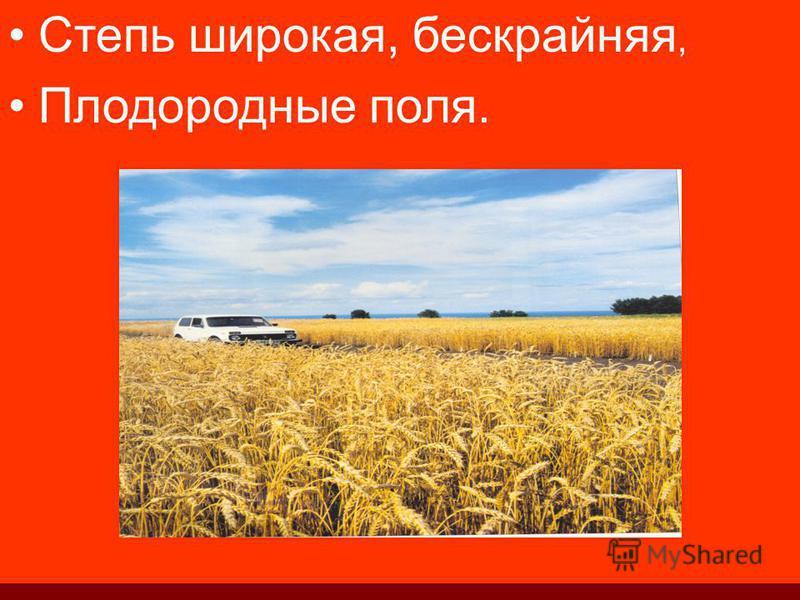 Степь широкая, бескрайняя, Плодородные поля.