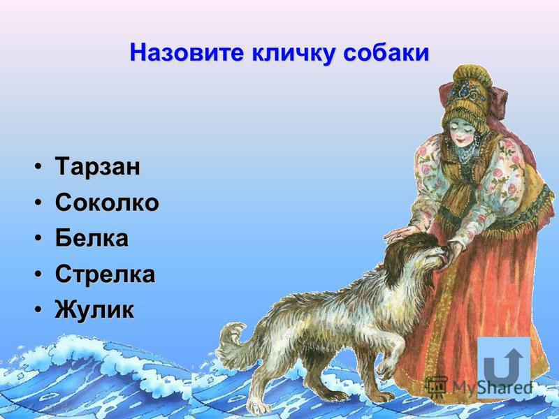 Назовите кличку собаки Тарзан Тарзан Соколко Соколко Белка Белка Стрелка Стрелка Жулик Жулик