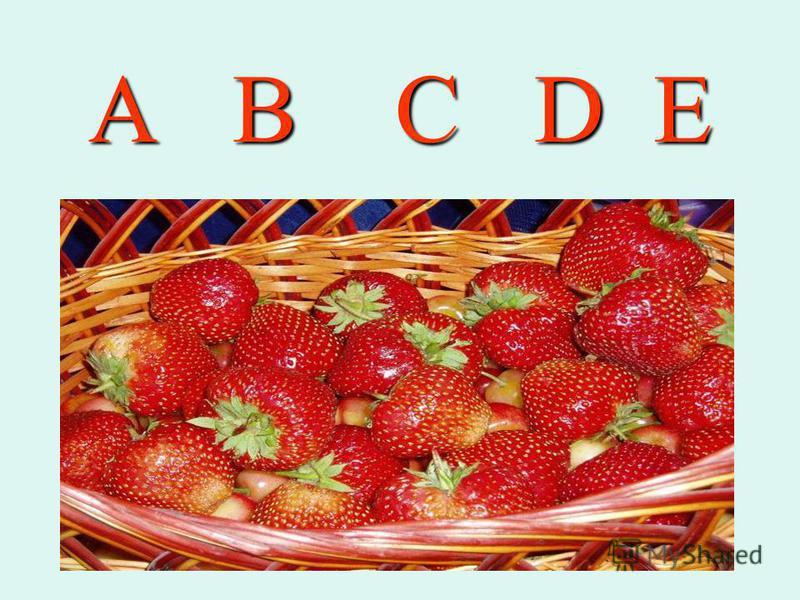 А B C D E
