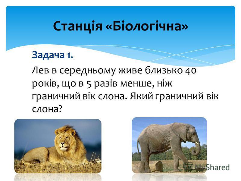 Задача 1. Лев в середньому живе близько 40 років, що в 5 разів менше, ніж граничний вік слона. Який граничний вік слона? Станція «Біологічна»