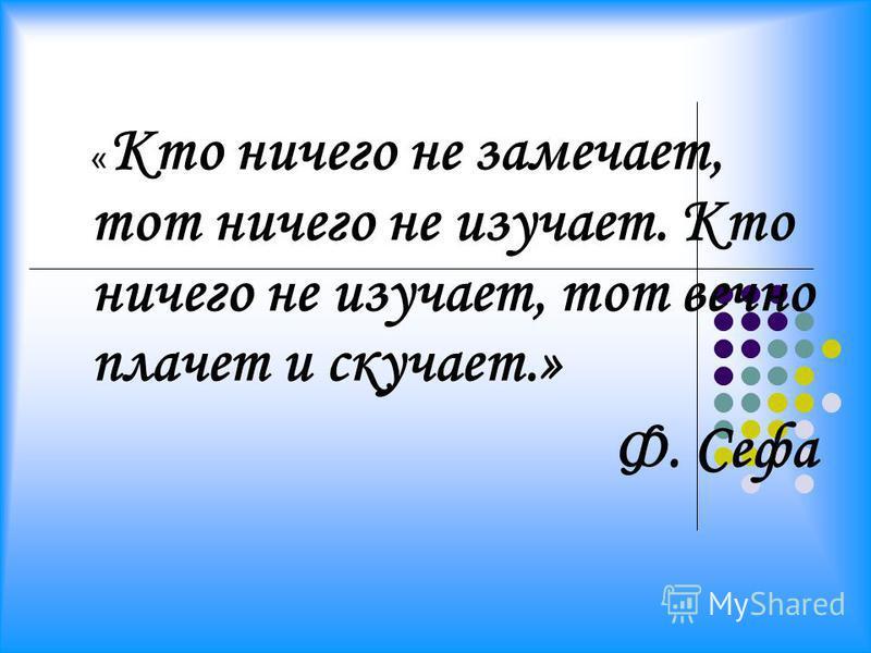 « Кто ничего не замечает, тот ничего не изучает. Кто ничего не изучает, тот вечно плачет и скучает.» Ф. Сефа