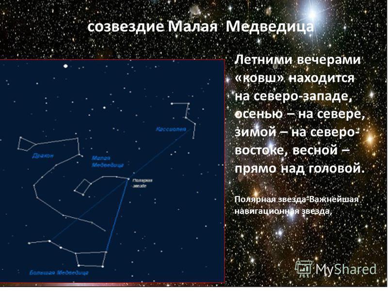 созвездие Малая Медведица Летними вечерами «ковш» находится на северо-западе, осенью – на севере, зимой – на северо- востоке, весной – прямо над головой. Полярная звезда-Важнейшая навигационная звезда,