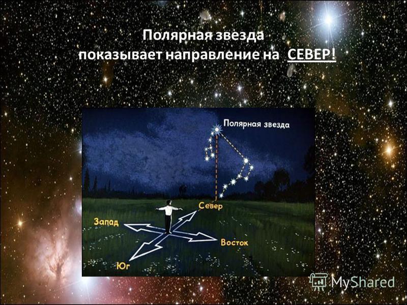 Полярная звезда показывает направление на СЕВЕР!