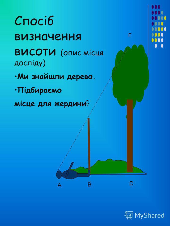 Для цього нам потрібно: Вибрати поодиноке дерево на галявині. Підібрати деревяну жердину, яку прийдеться устромити в землю так, щоб верхня частина як раз дорівнювала нашому зросту. Знайти таке місце для жердини, щоб учень, який лежатиме на землі, міг