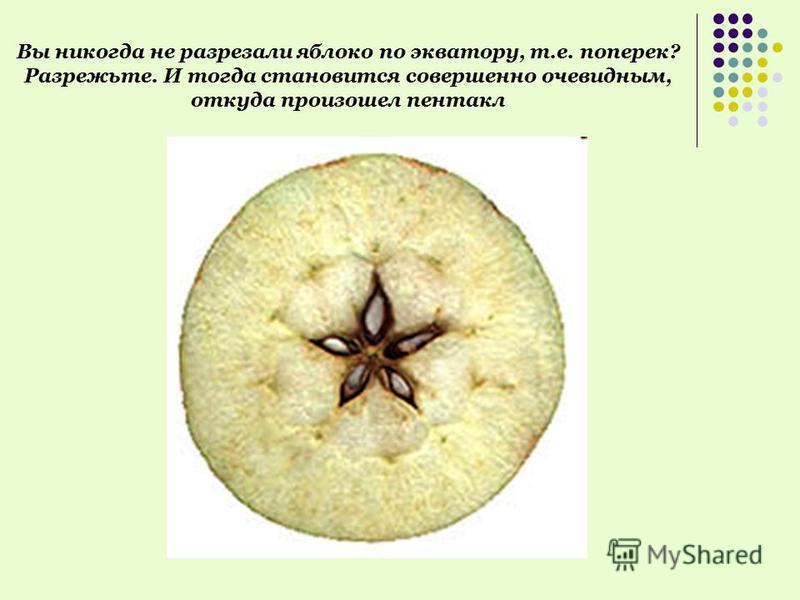 Вы никогда не разрезали яблоко по экватору, т.е. поперек? Разрежьте. И тогда становится совершенно очевидным, откуда произошел пентакл