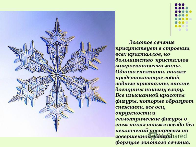 Золотое сечение присутствует в строении всех кристаллов, но большинство кристаллов микроскопически малы. Однако снежинки, также представляющие собой водные кристаллы, вполне доступны нашему взору. Все изысканной красоты фигуры, которые образуют снежи