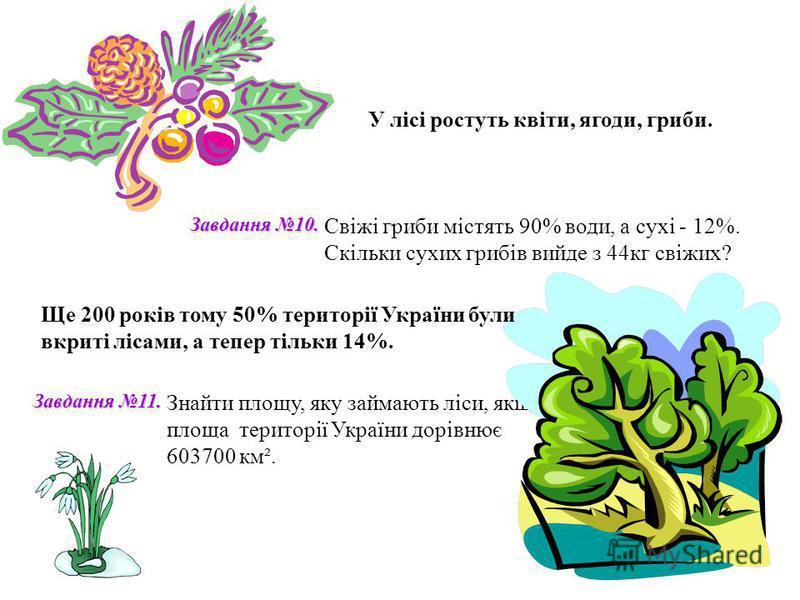 У лісі ростуть квіти, ягоди, гриби. Свіжі гриби містять 90% води, а сухі - 12%. Скільки сухих грибів вийде з 44кг свіжих? Знайти площу, яку займають ліси, якщо площа території України дорівнює 603700 км². Завдання 10. Завдання 11. Ще 200 років тому 5