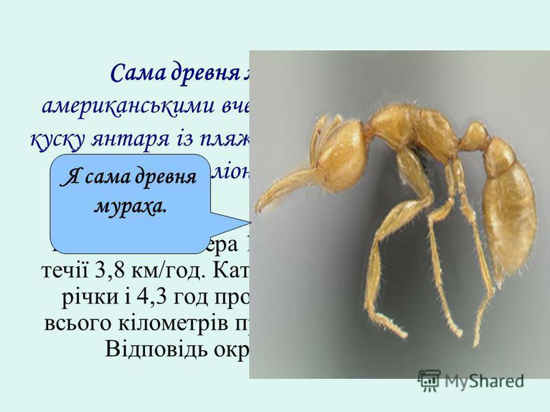 Сама древня мураха була знайдена американськими вченими із Музею історії в куску янтаря із пляжу в Нью-Джерсі. Він жив … мілліонів років назад. Швидкість катера 18,4 км/год, а швидкість течії 3,8 км/год. Катер плив 3,2 год за течією річки і 4,3 год п