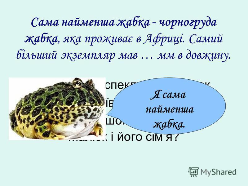 Сама найменша жабка - чорногруда жабка, яка проживає в Африці. Самий більший экземпляр мав … мм в довжину. Фрекен Бок спекла 96 плюшок. Карлсон зїв всіх плюшок. Скільки плюшок зможуть зїсти Малюк і його сімя? Я сама найменша жабка.