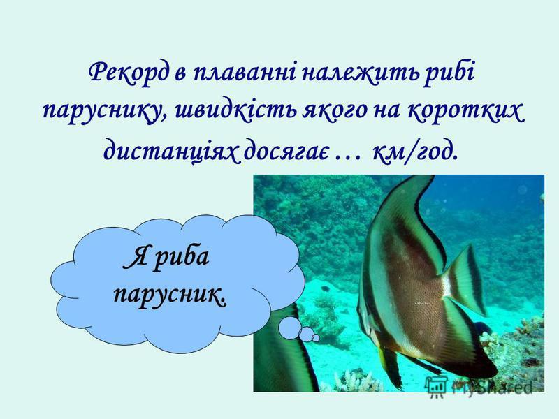 Рекорд в плаванні належить рибі паруснику, швидкість якого на коротких дистанціях досягає … км/год. Я риба парусник.