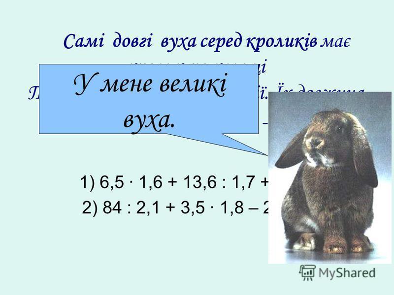 Самі довгі вуха серед кроликів має кролик по кличці Тобі III, який живе в Англії. Їх довжина складає... см, а ширина -... см. 1) 6,5 1,6 + 13,6 : 1,7 + 57,2; 2) 84 : 2,1 + 3,5 1,8 – 28,06. У мене великі вуха.