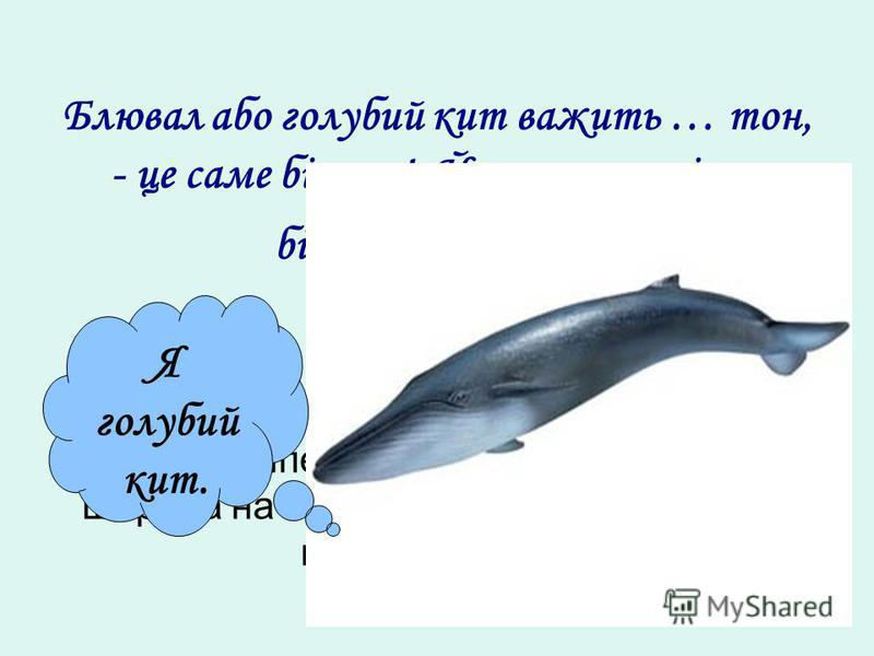 Блювал або голубий кит важить … тон, - це саме більше! Його паща вміщує більше тони води. Знайдіть обєм прямокутного паралелепіпеда, якщо його висота 10 м, ширина на 7 м менше, а висота більше ширини на 2 м. Я голубий кит.