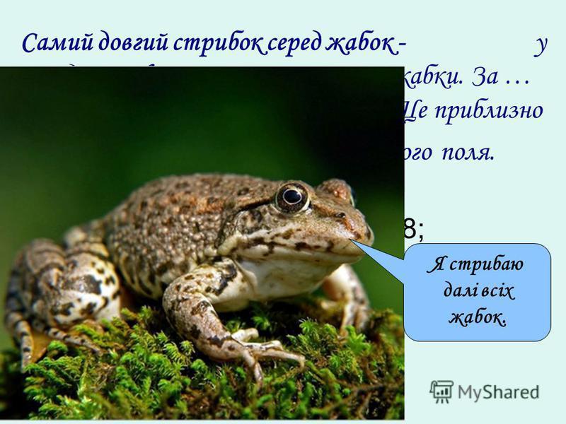Самий довгий стрибок серед жабок - у південноафриканскої гостроносої жабки. За … стрибки вона долає відстань … м. Це приблизно половина довжини баскетбольного поля. 1) (11,28 + 4 1,55) : 4,6 – 0,8; 2) 28у – 5у + 2у – 15у = 103. Я стрибаю далі всіх жа