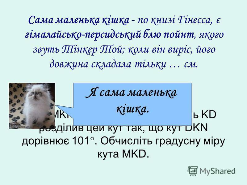 Кут MKN дорівнює 120. Промінь KD розділив цей кут так, що кут DKN дорівнює 101. Обчисліть градусну міру кута MKD. Сама маленька кішка - по книзі Гінесса, є гімалайсько-персидський блю пойнт, якого звуть Тінкер Той; коли він виріс, його довжина склада