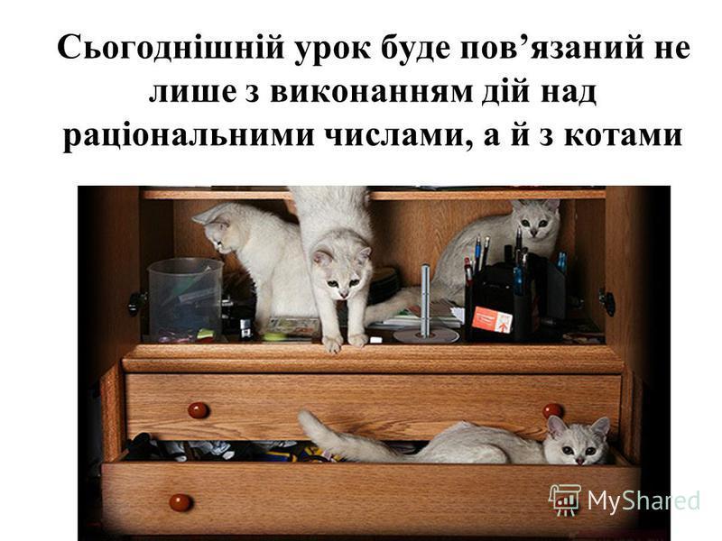 Сьогоднішній урок буде повязаний не лише з виконанням дій над раціональними числами, а й з котами