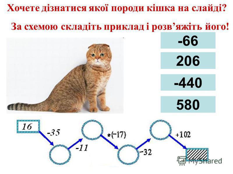 Хочете дізнатися якої породи кішка на слайді? За схемою складіть приклад і розвяжіть його! -66 206 -440 580