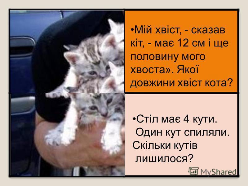 Мій хвіст, - сказав кіт, - має 12 см і ще половину мого хвоста». Якої довжини хвіст кота? Фантастична істота має дві праві ноги і дві ліві. Дві ноги спереду і дві ззаду. Скільки всього у неї ніг? Стіл має 4 кути. Один кут спиляли. Скільки кутів лишил
