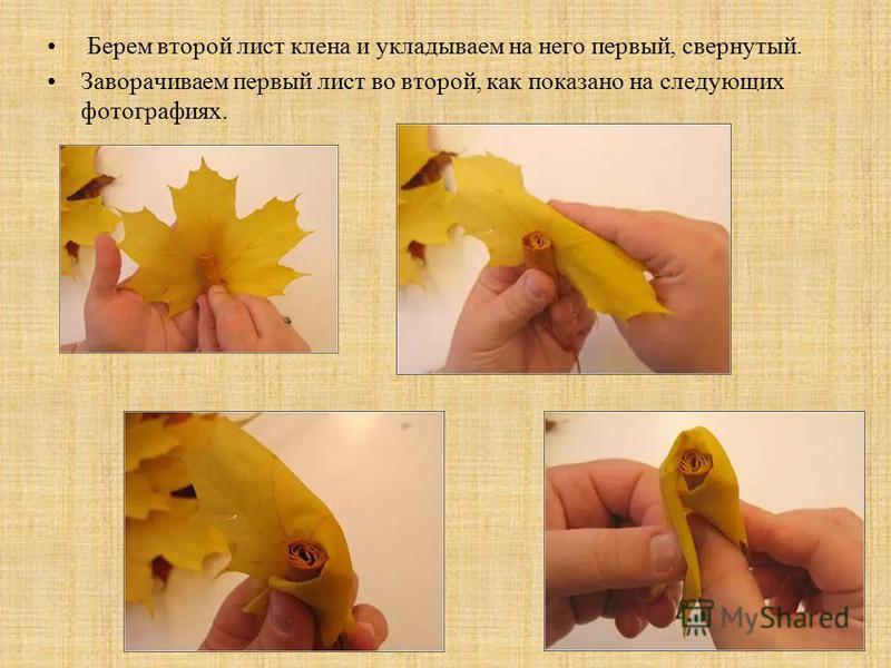 Берем второй лист клена и укладываем на него первый, свернутый. Заворачиваем первый лист во второй, как показано на следующих фотографиях.