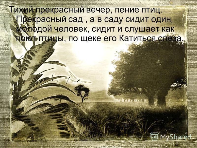 Тихий прекрасный вечер, пение птиц. Прекрасный сад, а в саду сидит один молодой человек, сидит и слушает как поют птицы, по щеке его Катиться слеза.