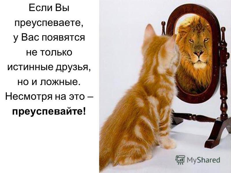 Если Вы преуспеваете, у Вас появятся не только истинные друзья, но и ложные. Несмотря на это – преуспевайте!