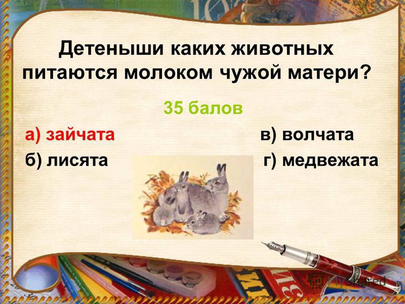 Детеныши каких животных питаются молоком чужой матери? 35 балов а) зайчата в) волчата б) лисята г) медвежата