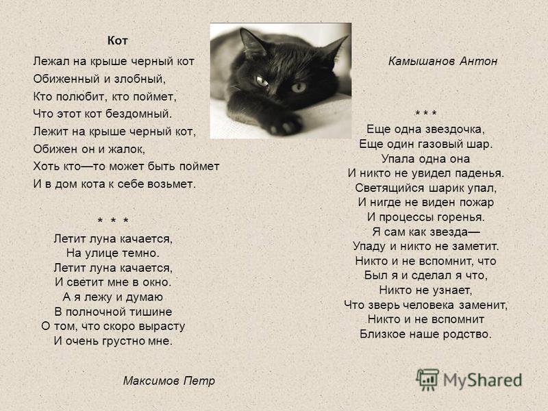 Кот Лежал на крыше черный кот Обиженный и злобный, Кто полюбит, кто поймет, Что этот кот бездомный. Лежит на крыше черный кот, Обижен он и жалок, Хоть ктото может быть поймет И в дом кота к себе возьмет. * * * Летит луна качается, На улице темно. Лет