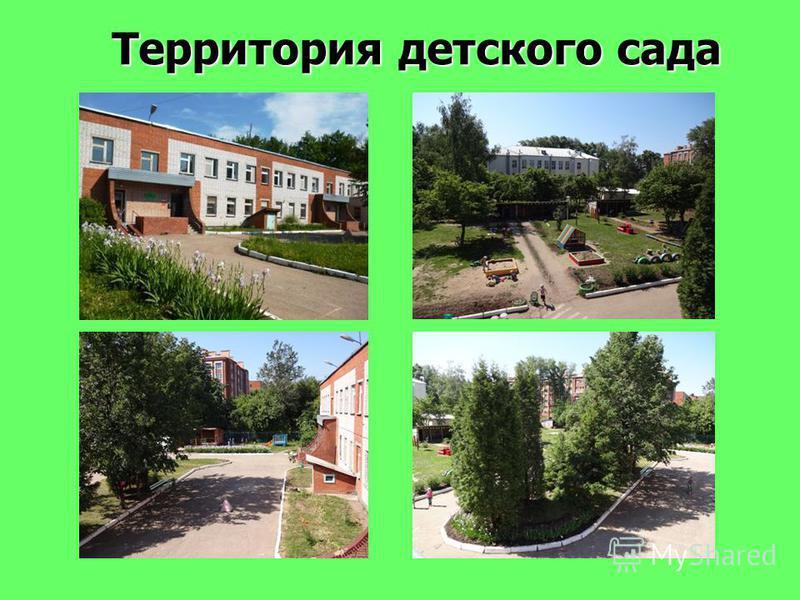 Территория детского сада Территория детского сада
