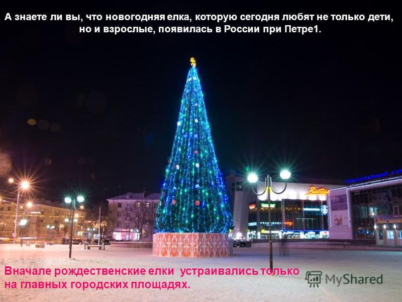 Вначале рождественские елки устраивались только на главных городских площадях. А знаете ли вы, что новогодняя елка, которую сегодня любят не только дети, но и взрослые, появилась в России при Петре 1.