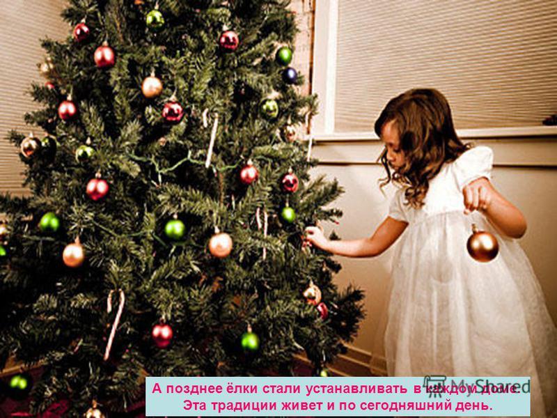 А позднее ёлки стали устанавливать в каждом доме. Эта традиции живет и по сегодняшний день.