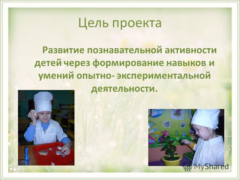 Цель проекта Развитие познавательной активности детей через формирование навыков и умений опытно- экспериментальной деятельности.