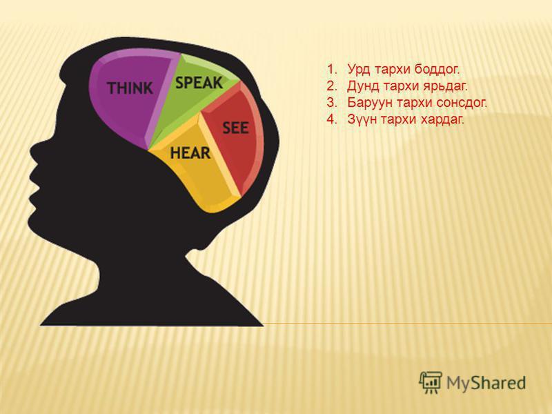 1.Урд тархи боддог. 2.Дунд тархи ярьдаг. 3.Баруун тархи сонсдог. 4.Зүүн тархи хардаг.