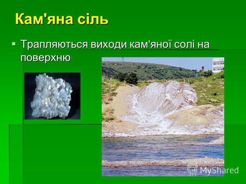 Кам'яна сіль Трапляються виходи кам ' яної солі на поверхню Трапляються виходи кам ' яної солі на поверхню