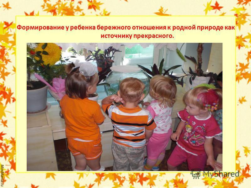 Формирование у ребенка бережного отношения к родной природе как источнику прекрасного.