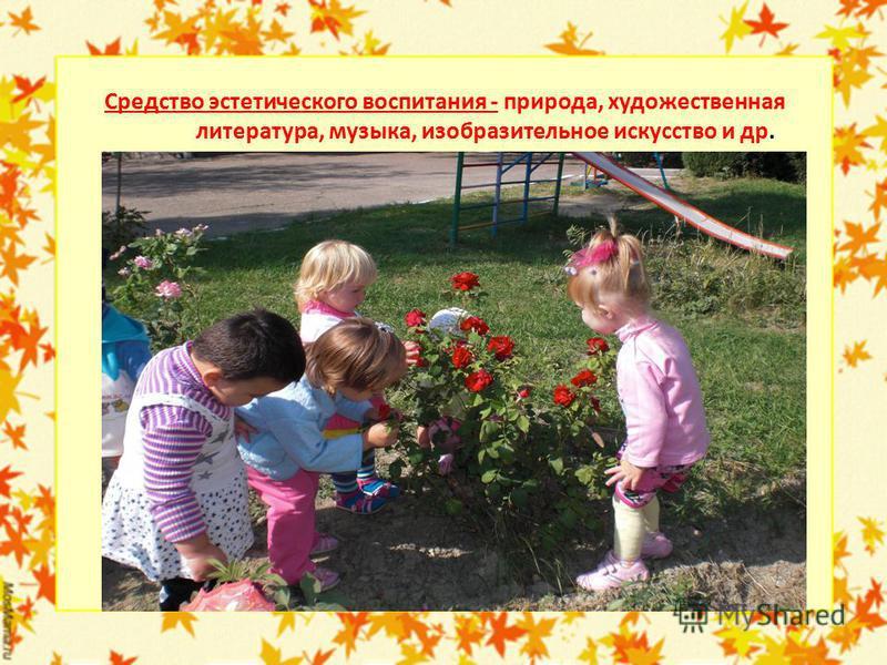 Средство эстетического воспитания - природа, художественная литература, музыка, изобразительное искусство и др.