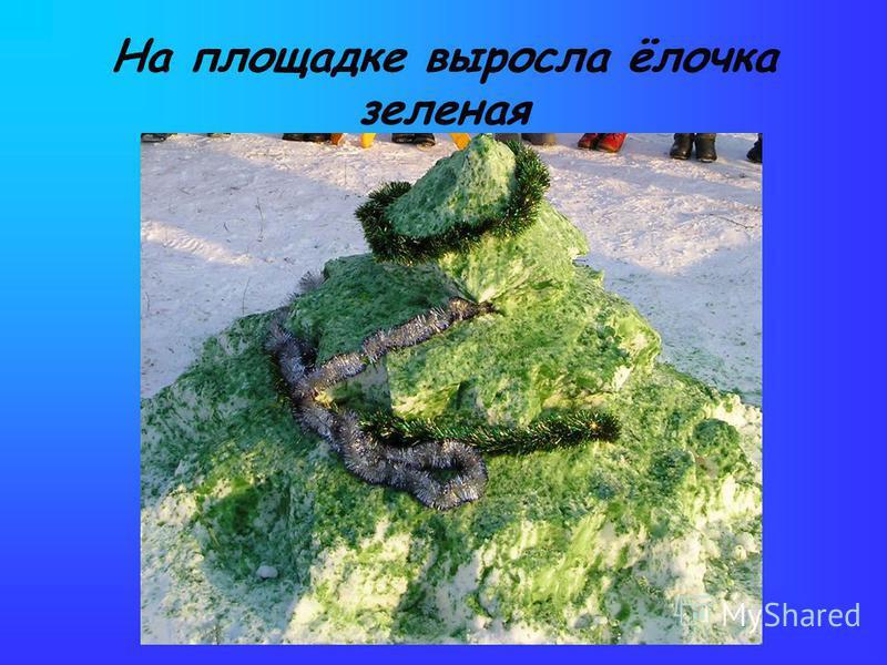 На площадке выросла ёлочка зеленая