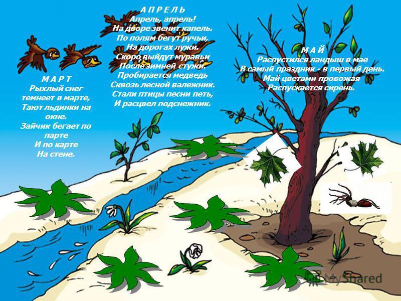 М А Р Т Рыхлый снег темнеет в марте, Тают льдинки на окне. Зайчик бегает по парте И по карте На стене. А П Р Е Л Ь Апрель, апрель! На дворе звенит капель. По полям бегут ручьи, На дорогах лужи. Скоро выйдут муравьи После зимней стужи. Пробирается мед