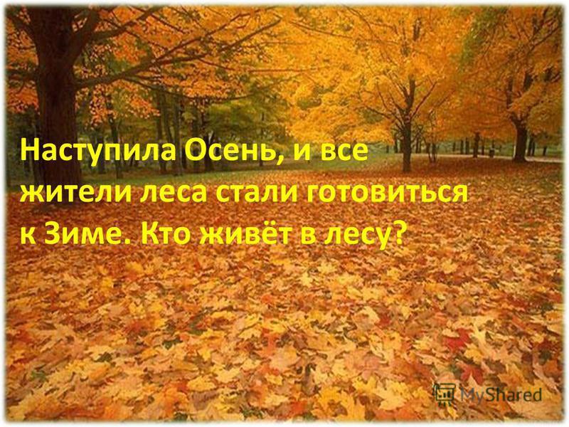 Кончилось Лето Наступила Осень, и все жители леса стали готовиться к Зиме. Кто живёт в лесу?