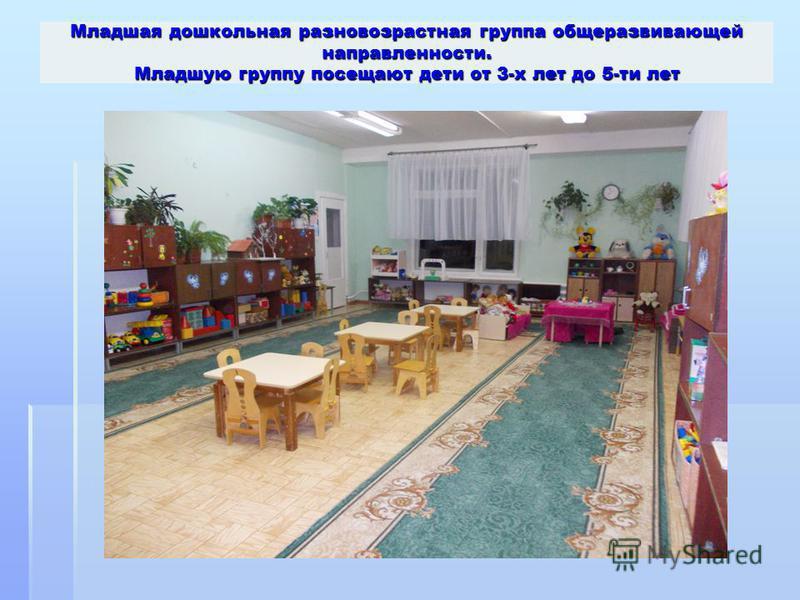 Младшая дошкольная разновозрастная группа общеразвивающей направленности. Младшую группу посещают дети от 3-х лет до 5-ти лет