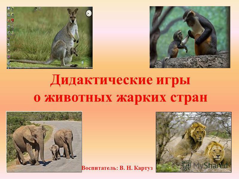 Дидактические игры о животных жарких стран Воспитатель: В. Н. Картуз
