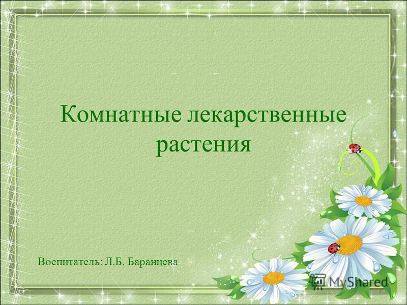 Комнатные лекарственные растения Воспитатель: Л.Б. Баранцева