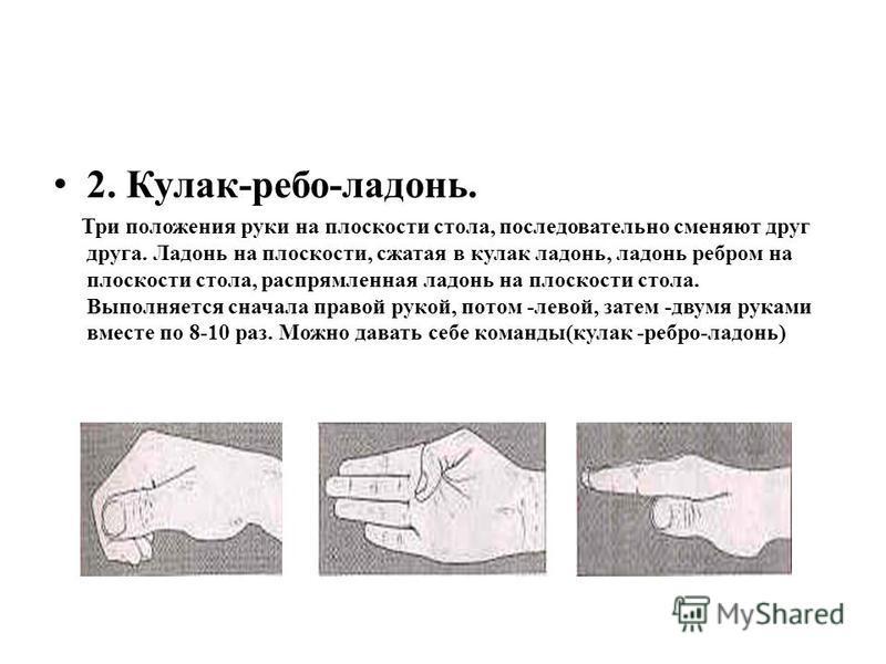 2. Кулак-ребро-ладонь. Три положения руки на плоскости стола, последовательно сменяют друг друга. Ладонь на плоскости, сжатая в кулак ладонь, ладонь ребром на плоскости стола, распрямленная ладонь на плоскости стола. Выполняется сначала правой рукой,