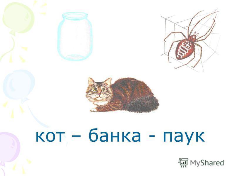 кот – банка - паук