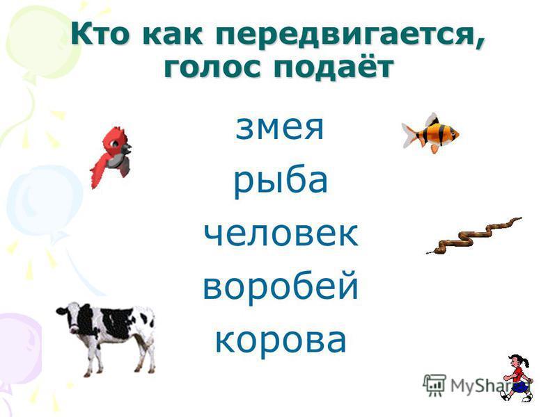 Кто как передвигается, голос подаёт змея рыба человек воробей корова
