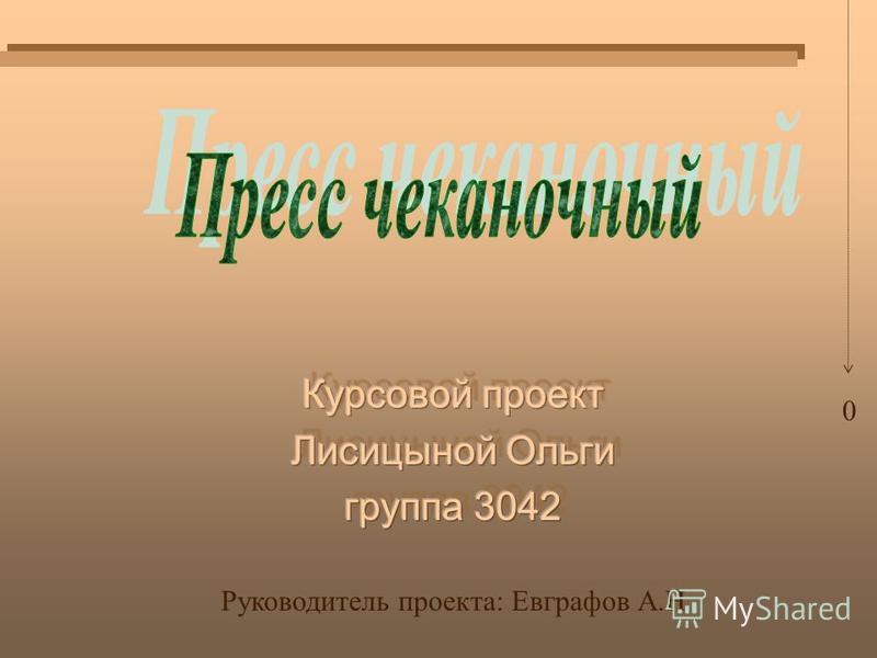 0 Руководитель проекта: Евграфов А.Н