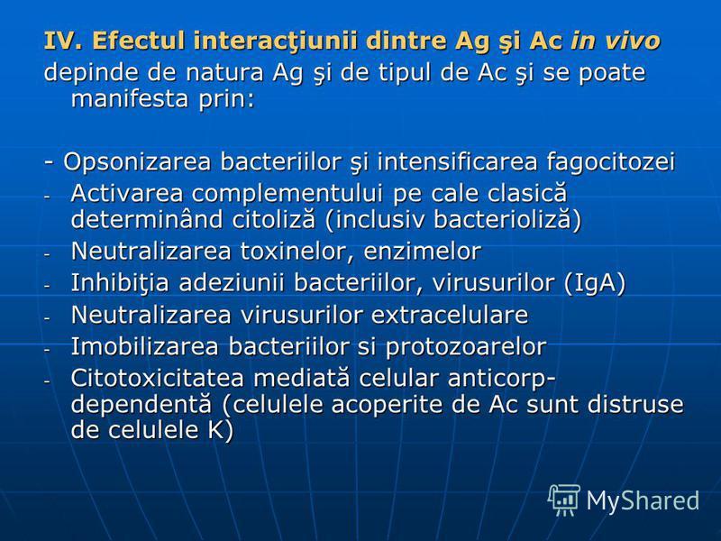 IV. Efectul interacţiunii dintre Ag şi Ac in vivo depinde de natura Ag şi de tipul de Ac şi se poate manifesta prin: - Opsonizarea bacteriilor şi intensificarea fagocitozei - Activarea complementului pe cale clasică determinând citoliză (inclusiv bac