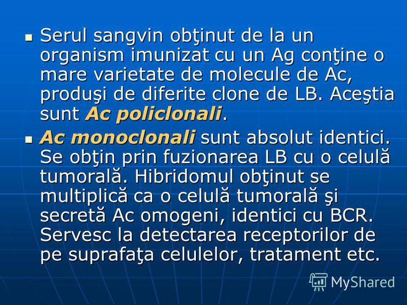 Serul sangvin obţinut de la un organism imunizat cu un Ag conţine o mare varietate de molecule de Ac, produşi de diferite clone de LB. Aceştia sunt Ac policlonali. Serul sangvin obţinut de la un organism imunizat cu un Ag conţine o mare varietate de