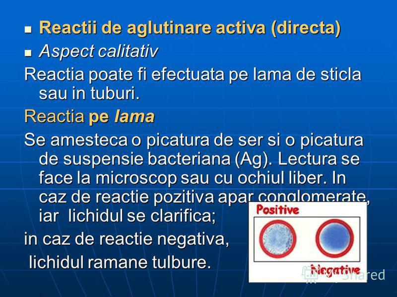 Reactii de aglutinare activa (directa) Reactii de aglutinare activa (directa) Aspect calitativ Aspect calitativ Reactia poate fi efectuata pe lama de sticla sau in tuburi. Reactia pe lama Se amesteca o picatura de ser si o picatura de suspensie bacte